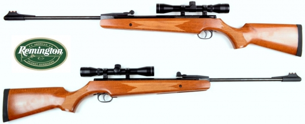 Remington Air Rifles with Scopes 4x32 2019 Flyer